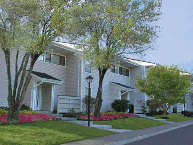 Mountain View Apartments photo #1
