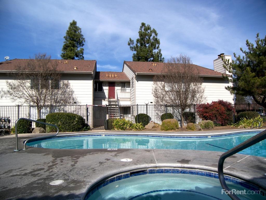 904 Olivewood Drive photo #1