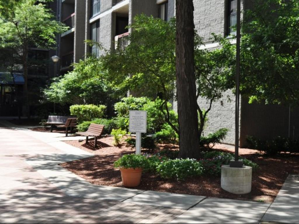 808 memorial drive apartments cambridge ma walk score - 3 bedroom apartments in cambridge ma ...