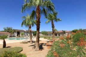 Desert Gardens Apartments photo #1