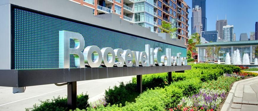 The Lofts at Roosevelt Collection Apartments photo #1