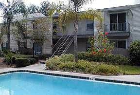 Studio apartment 12101 North Dale Mabry Hwy Apartments photo #1