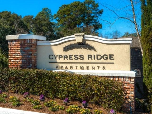 Cypress Ridge Apartments photo #1