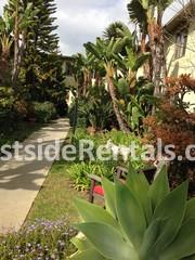 427 San Vicente Blvd photo #1