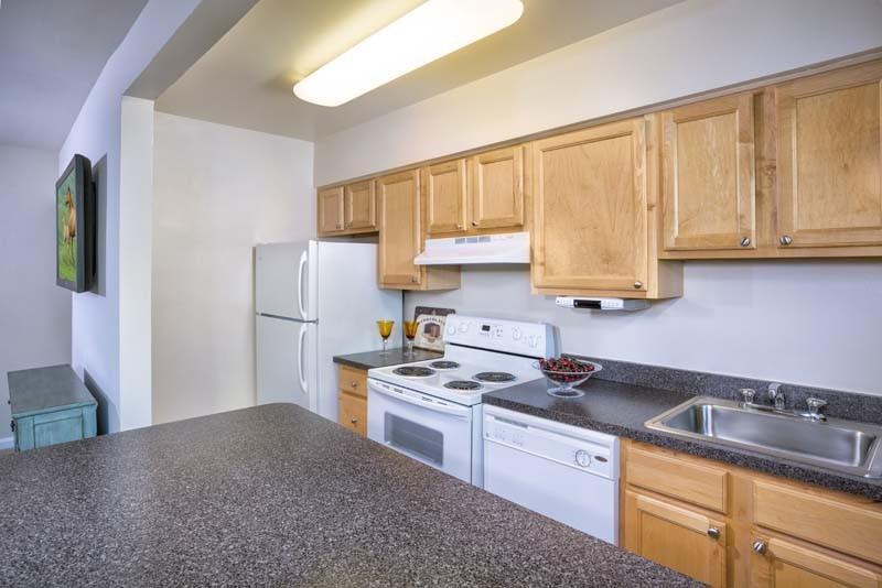 Cypress Creek Apartments photo #1