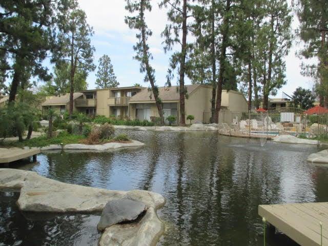 The Streams Apartments photo #1