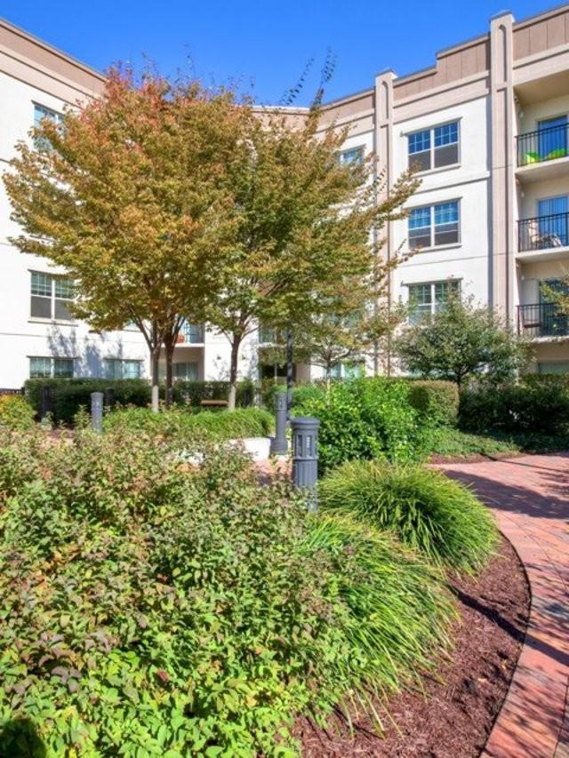 Avalon at Glen Cove Apartments photo #1