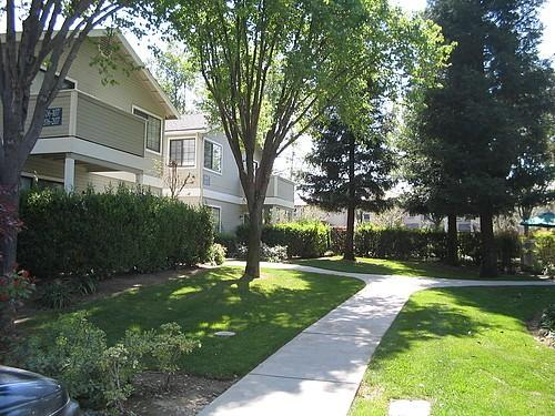 Dominion Heights Apartments photo #1