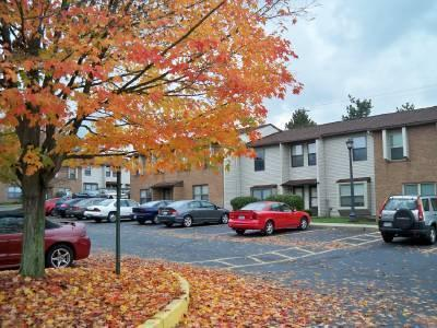 University Town Homes Off Campus Housing photo #1