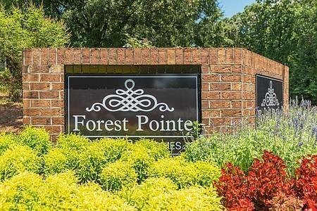 Forest Pointe Apartments photo #1