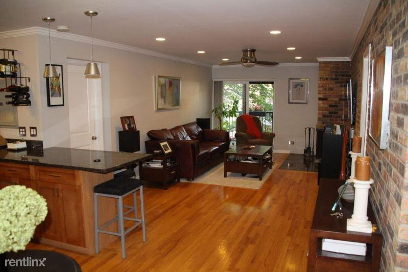 401 W Webster Ave 201 photo #1