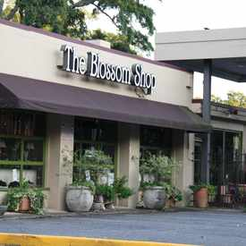Photo of The Blossom Shop Florist