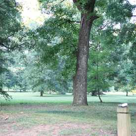 Photo of Eastover Park