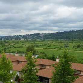 Photo of Colony Farm