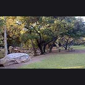 Photo of Stevens Park