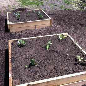Photo of Lawrenceville Organic Community Garden