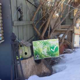 Photo of Rabbit's Yard