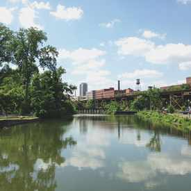 Photo of Great Shiplock Park