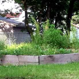 Photo of Community Garden Locust St. in Riverwest