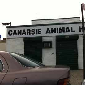 Photo of Canarsie Animal Hospital