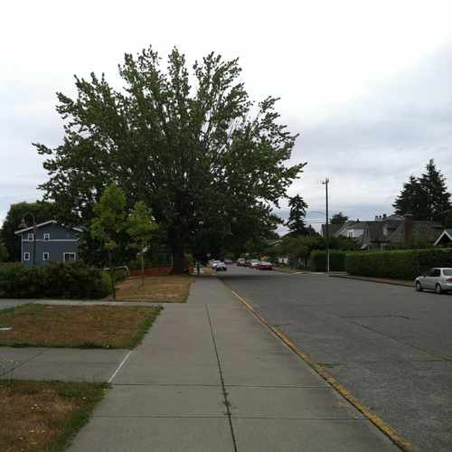 photo of 49TH AVE SW & SW HINDS ST at 4802 Southwest Hinds Street Seattle WA 98116