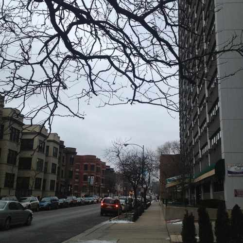photo of Belmont Tower Apartments at 510 West Belmont Avenue Chicago IL 60657