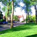 Photo of Cherokee Pkwy in Cherokee Triangle, Louisville-Jefferson