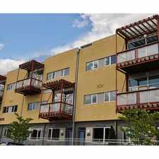Rental info for Edgeline Flats on Davidson in the Charlotte area