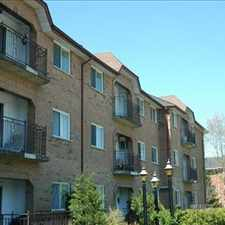 Rental info for Mornington and McCarthy: 15 Greenwood Drive, 1BR in the Stratford area