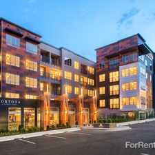 Rental info for Cortona at Forest Park