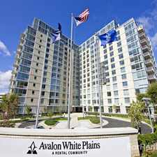Rental info for Avalon White Plains