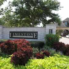 Rental info for Limestone in the Houston area