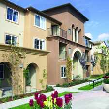 Rental info for Muirlands at Windemere Apartments