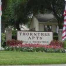 Rental info for Thorntree in the Houston area