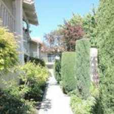 Rental info for Franciscan, The in the San Jose area