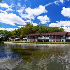 Rental info for Springbrook Flats