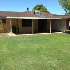 Rental info for Newly Renovated in the Busselton area