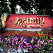Rental info for A'cappella in the North Lynnwood area