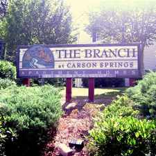 Rental info for Branch at Carson Springs