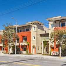 Rental info for IMT Townhomes at Magnolia Woods