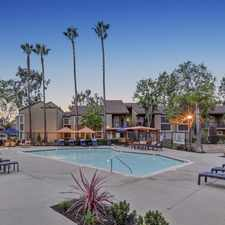 Rental info for Park Pointe Rancho San Diego in the Rancho San Diego area