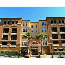 Rental info for Spacious 3br/2ba Penthouse Corner Unit at South City Lights