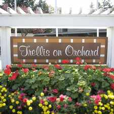 Rental info for Trellis on Orchard in the South Tacoma area