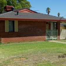 Rental info for TRANQUIL GEM IN COOLOONGUP in the Perth area
