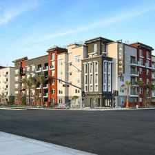 Rental info for The Alton in the Irvine area