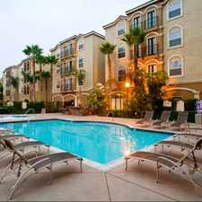 Rental info for The Palms On University