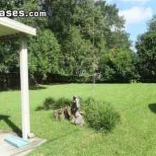 Rental info for $1375 3 bedroom House in East Baton Rouge