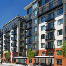 Rental info for Moda in the Downtown area