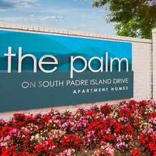 Rental info for The Palm in the Corpus Christi area