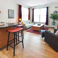 Rental info for College Suites at Washington Square